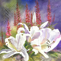 Lilies and Lythrum