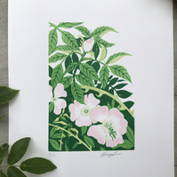 Wild Rose: Original, hand printed lino cut print by Suffolk artist Beth Knight