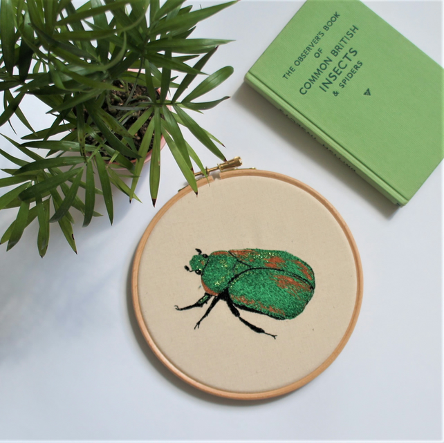 Rose chafer - gorgeous shiny green beetle