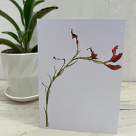 Kaffir Lily Notecards - 5 blank cards with envelopes