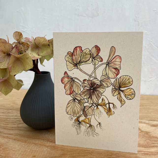Hydrangea Notecards - 5 blank cards with envelopes