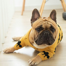 Halloween Dog Clothes, Bat Knitted Jumper for dogs, Halloween costume, dog cloth