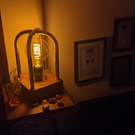 Handmade Industrial Copper Lamp Seampunk filament Style
