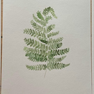 Fern Leaf Watercolour Print