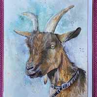 Goat greeting card 5 x 7 blank envelope and cello bag