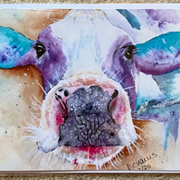 Cow greeting card 5 x 7 blank envelope and cello bag