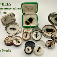 Book Special Offer - The books of the bees from 3rd and 4th FIFTY BEES - bees
