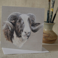 Jacob sheep ram with magnificent horns greetings card