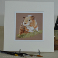 "Really Cute Little Pet Guinea Pig Mini 8"" x 8"" print"