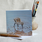 Avocet Chick blank greetings card