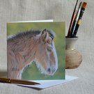 Sleepy Heavy Horse Foal blank greetings card