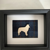 Border Collie gift frame