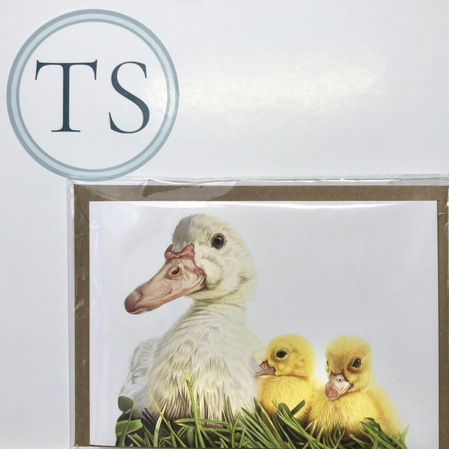 Mumma Duck and Ducklings Greeting Card