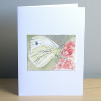 Original Hand Painted Cryptic Wood White Butterfly 5x7 Greeting Card