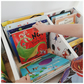 Childrens Book and Toy Bin Library