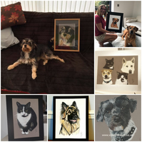 Custom Hand Drawn Cat,Dog,Pet Portrait