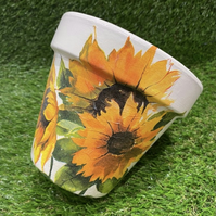 Sunflower plant pot, 15cm terracotta plant pot, suitable for indoor and outdoor