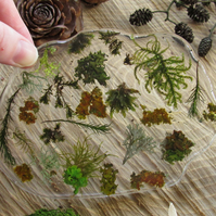 Moss in Resin Ornament - 'Hedgerow'