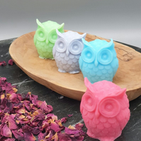 Wise Old Owl Handmade Soap - Set of 3