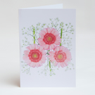 Notelets – Thank You Cards - Germini Flower - Pack of 5 with Envelopes