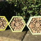Bug Box, Bug Hotel, Insect Hotel