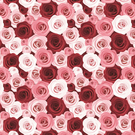 Stunning Pink And Red Roses Wrapping Paper