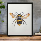 Bee Watercolour Print - The Early Bumblebee (A4)