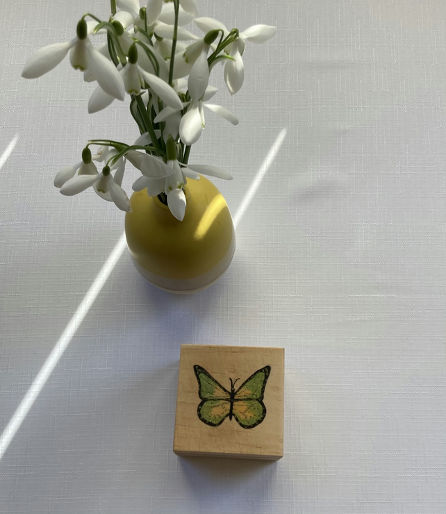 Hand Painted Small Green Butterfly Box