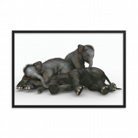 Tired Elephants Animal Glossy Paper Print