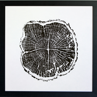 Hawthorn or May Tree Ring print - art from nature