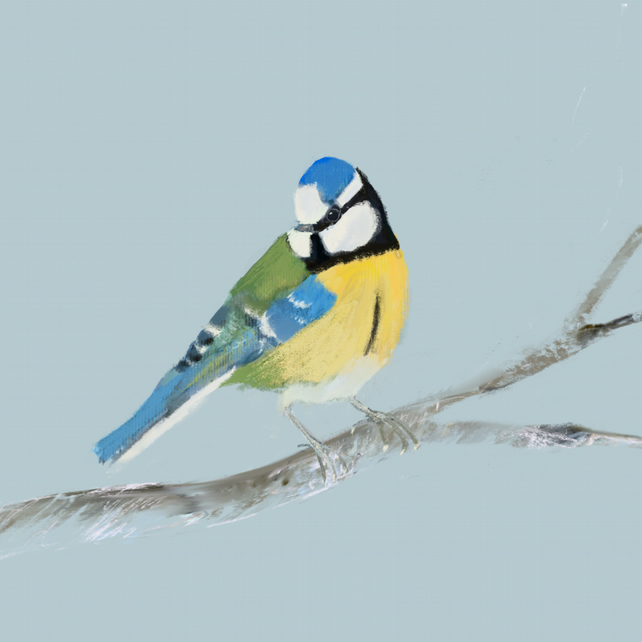 Blue Tit - Thank you blank card