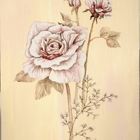 Pink and white painting of roses on canvas with pink and cream background