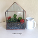 Windowsill planter for succulents