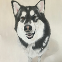 Hand painted Pet Portraits in Oil Paintings