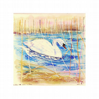 Swan Original Square Watercolour Painting . Small Wild Life Modern Artwork