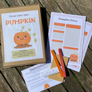 Kids activity box, garden set for kids, grow your own pumpkin