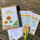 Kids activity box, garden set for kids, grow your own giant sunflower