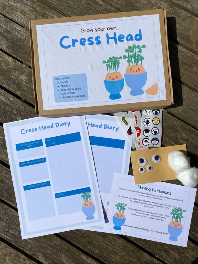 Multi Pack - 10 x Grown your own cress head kit - Party Bag Filler