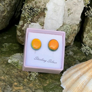 Small Fused Glass Stud Earrings on Sterling Silver.