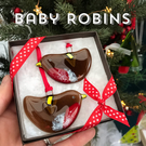 Christmas decoration gift set - Two BABY robins