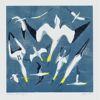 Original lino print Gannets at Belhaven Bay