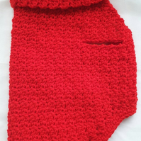 Red dog sweater, dog sweater for small dog or puppy