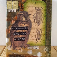 SALE - Curiosity Creates Wisdom Owl Original Mixed Media Art on Small Canvas