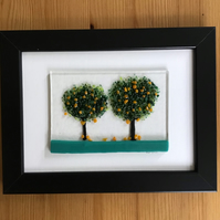 Picture. Orange trees in black 5x7ins frame. Birthday, anniversary, celebration.