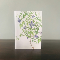 Pack of x5 Clematis Greetings Cards, Watercolour Prints. Blank Inside