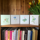 Pack of 4 Mixed Watercolour Print Cards