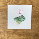Pack of x5 Floral Cylamen Greetings Cards