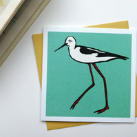 Black Winged Stilt Blank Greetings Card Free UK Postage