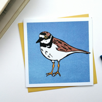 Little Ringed Plover Blank Greetings Card Free Postage Birdwatching Birding Bird
