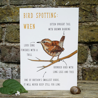Birdwatching: Wren Identification Valentines Blank Greetings Card Free Postage R